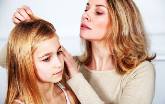 How To Kill Head Lice